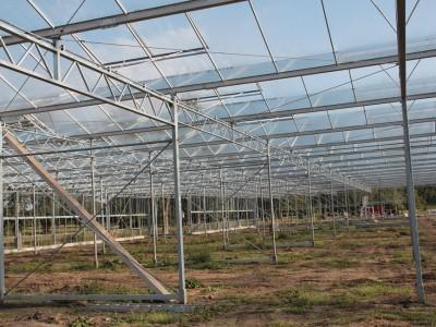 00005 Lochristi Belgie Kassenbouw Olsthoorn Greenhouse