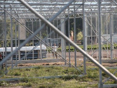 00008 Lochristi Belgie Kassenbouw Olsthoorn Greenhouse