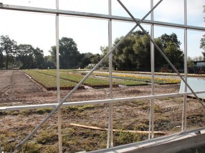 00011 Lochristi Belgie Kassenbouw Olsthoorn Greenhouse