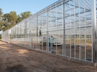 00017 Lochristi Belgie Kassenbouw Olsthoorn Greenhouse