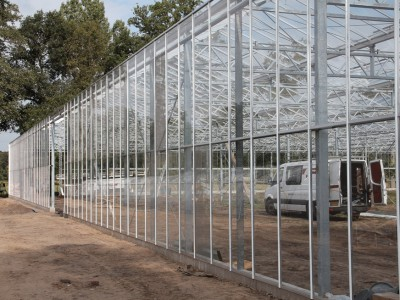 00019 Lochristi Belgie Kassenbouw Olsthoorn Greenhouse