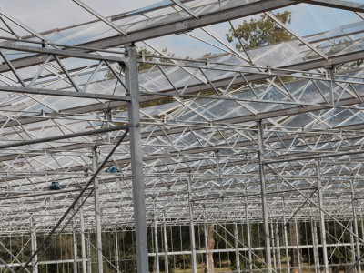 00021 Lochristi Belgie Kassenbouw Olsthoorn Greenhouse