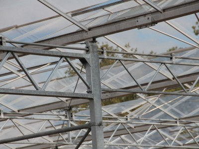 00022 Lochristi Belgie Kassenbouw Olsthoorn Greenhouse
