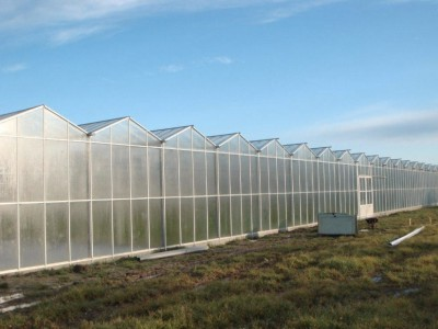 1 Var Frankrijk Kassenbouw Olsthoorn Greenhouse Projects 3