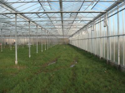 2 Var Frankrijk Kassenbouw Olsthoorn Greenhouse Projects 4