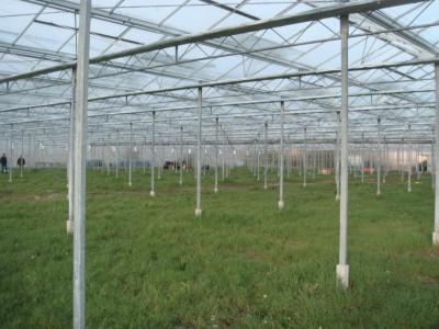 3 Var Frankrijk Kassenbouw Olsthoorn Greenhouse Projects 5