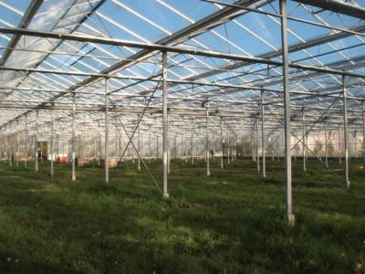4 Var Frankrijk Kassenbouw Olsthoorn Greenhouse Projects 6