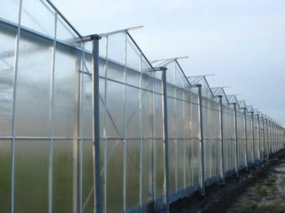 5 Var Frankrijk Kassenbouw Olsthoorn Greenhouse Projects 7