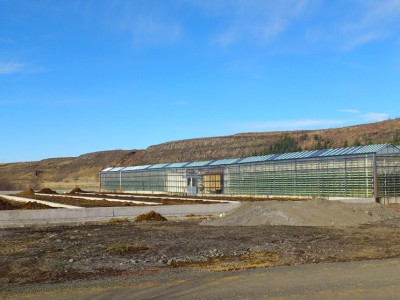 00004 Selfoss IJsland Kassenbouw Olsthoorn Greenhouse Projects