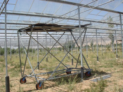 Doostwand iran Olsthoorn Greenhouse 2