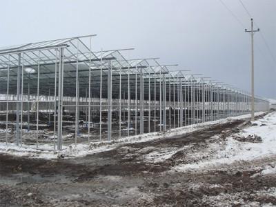 Kermanshah iran Olsthoorn Greenhouse 1