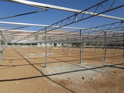 Shiraz Iran Olsthoorn Greenhouse00002