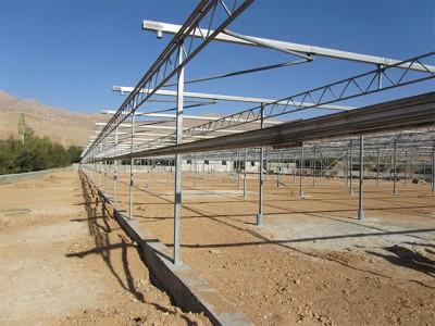 Shiraz Iran Olsthoorn Greenhouse00003