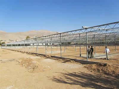 Shiraz Iran Olsthoorn Greenhouse00005