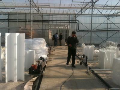 Tabriz iran Olsthoorn Greenhouse 1