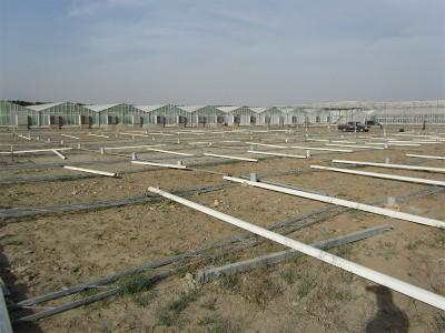 Tabriz iran Olsthoorn Greenhouse 10
