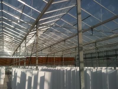 Tabriz iran Olsthoorn Greenhouse 3