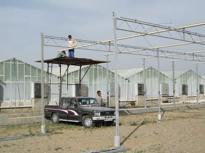 Tabriz iran Olsthoorn Greenhouse 7