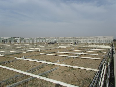Tabriz iran Olsthoorn Greenhouse 9