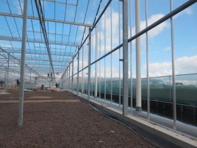 00011 Boskoop Nederland kassenbouw olsthoorn greenhouse