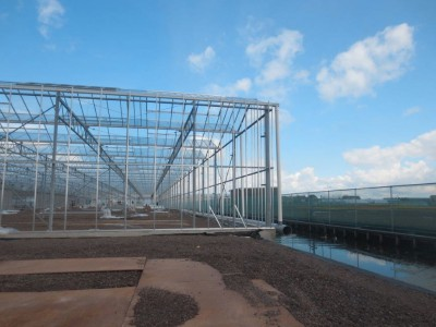 00012 Boskoop Nederland kassenbouw olsthoorn greenhouse