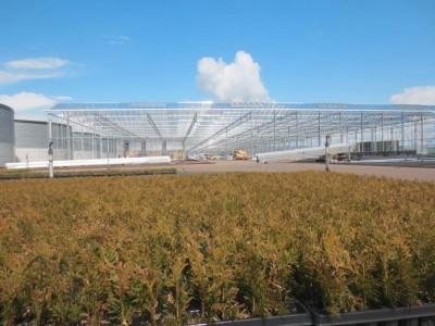 00013 Boskoop Nederland kassenbouw olsthoorn greenhouse