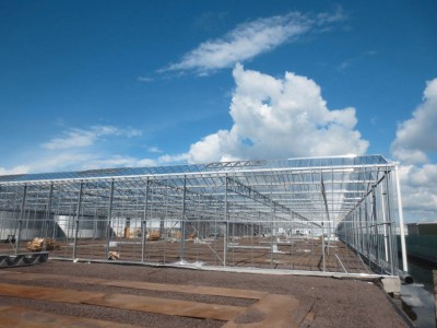 00016 Boskoop Nederland kassenbouw olsthoorn greenhouse