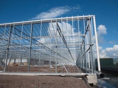 00017 Boskoop Nederland kassenbouw olsthoorn greenhouse