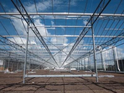00018 Boskoop Nederland kassenbouw olsthoorn greenhouse