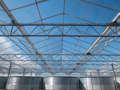 00020 Boskoop Nederland kassenbouw olsthoorn greenhouse