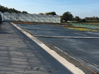 00002 Tandragee Northern Ireland Kassenbouw Olsthoorn Greenhouse Projects