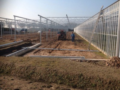 00013 Tandragee Northern Ireland Kassenbouw Olsthoorn Greenhouse Projects