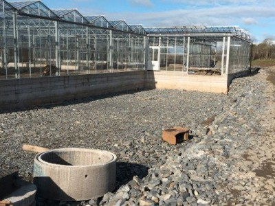 00020 Tandragee Northern Ireland Kassenbouw Olsthoorn Greenhouse Projects