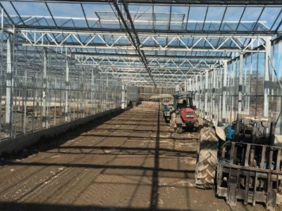 00027 Tandragee Northern Ireland Kassenbouw Olsthoorn Greenhouse Projects
