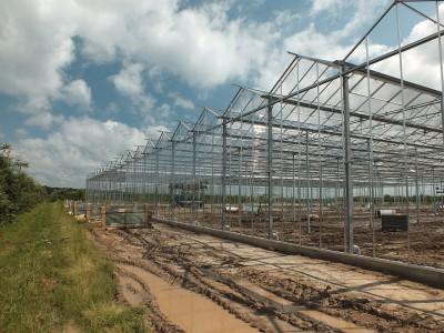 00001 Belsk Duzy Polen kassenbouw olsthoorn greenhouse