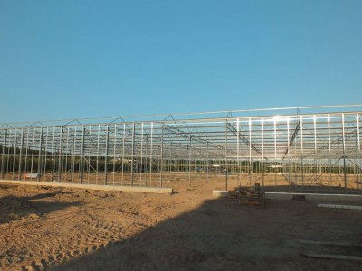00004 Belsk Duzy Polen kassenbouw olsthoorn greenhouse