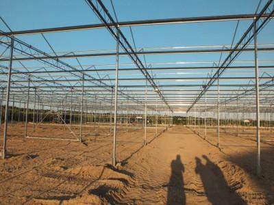 00005 Belsk Duzy Polen kassenbouw olsthoorn greenhouse