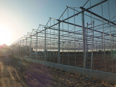 00006 Belsk Duzy Polen kassenbouw olsthoorn greenhouse