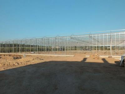 00010 Belsk Duzy Polen kassenbouw olsthoorn greenhouse