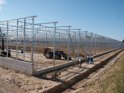 00016 Blaszki Polen kassenbouw olsthoorn greenhouse