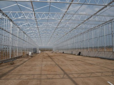 00024 Blaszki Polen kassenbouw olsthoorn greenhouse
