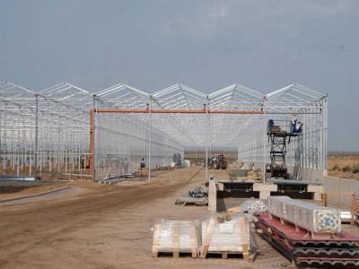 00027 Blaszki Polen kassenbouw olsthoorn greenhouse
