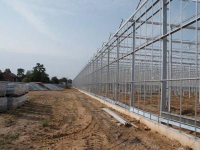 00028 Blaszki Polen kassenbouw olsthoorn greenhouse