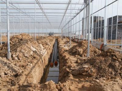00030 Blaszki Polen kassenbouw olsthoorn greenhouse