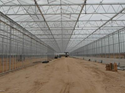 00033 Blaszki Polen kassenbouw olsthoorn greenhouse