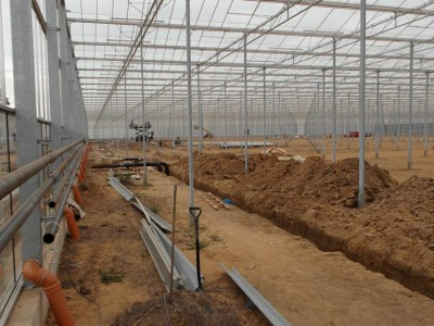 00037 Blaszki Polen kassenbouw olsthoorn greenhouse