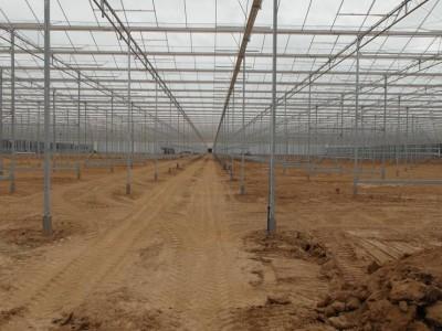 00041 Blaszki Polen kassenbouw olsthoorn greenhouse