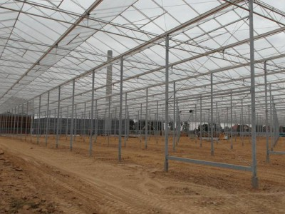 00042 Blaszki Polen kassenbouw olsthoorn greenhouse