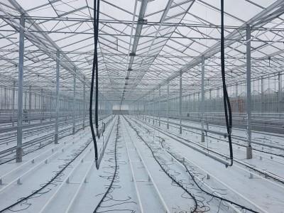 00001 Pleszew Polen kassenbouw olsthoorn greenhouse