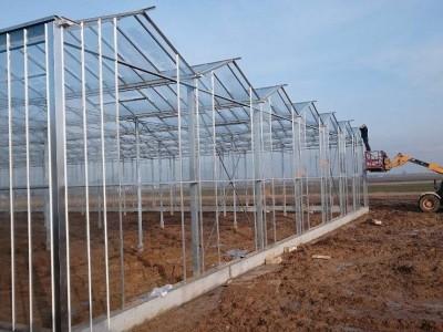 00002 Pleszew Polen kassenbouw olsthoorn greenhouse